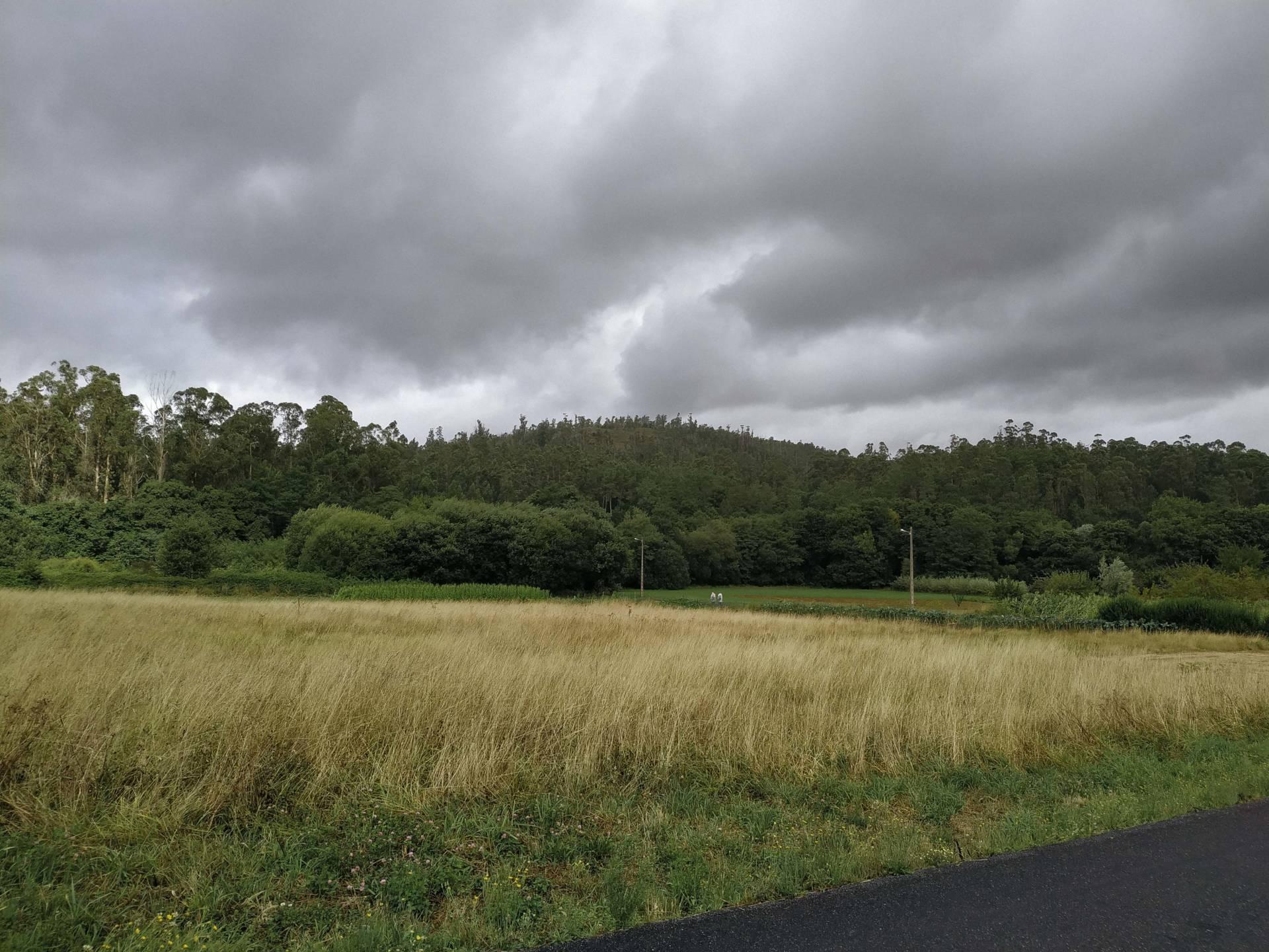 Vista do Monte San Miguel (Villestro, Santiago).