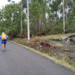 Camiño de Santiago e petróglifo do Rexío á dereita.