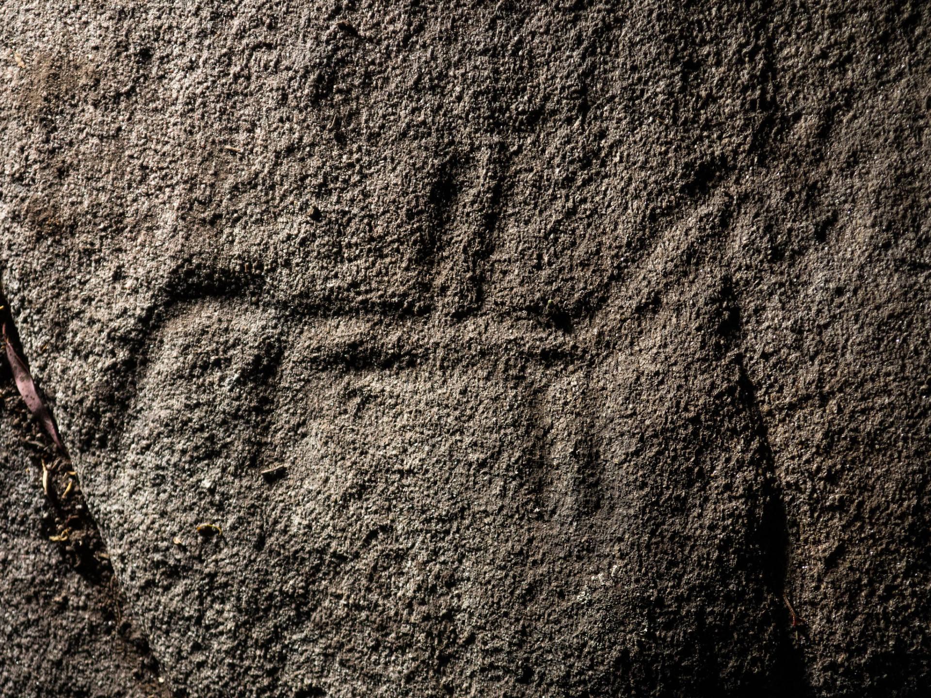 Monta a cabalo na Pedra da Loba.©Colectivo a Rula.
