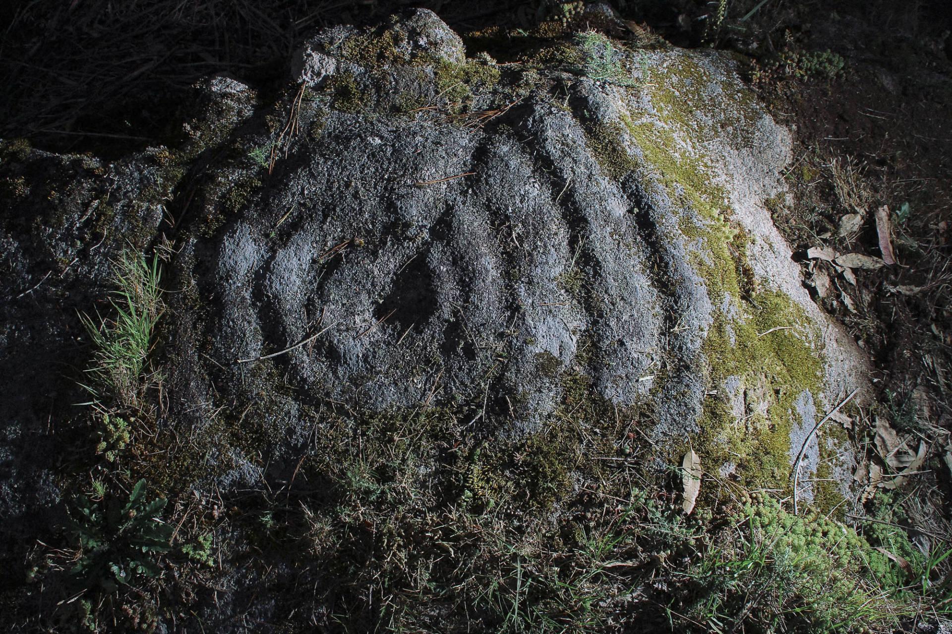 Detalle de combinación circular en Oca.©Colectivo a Rula.
