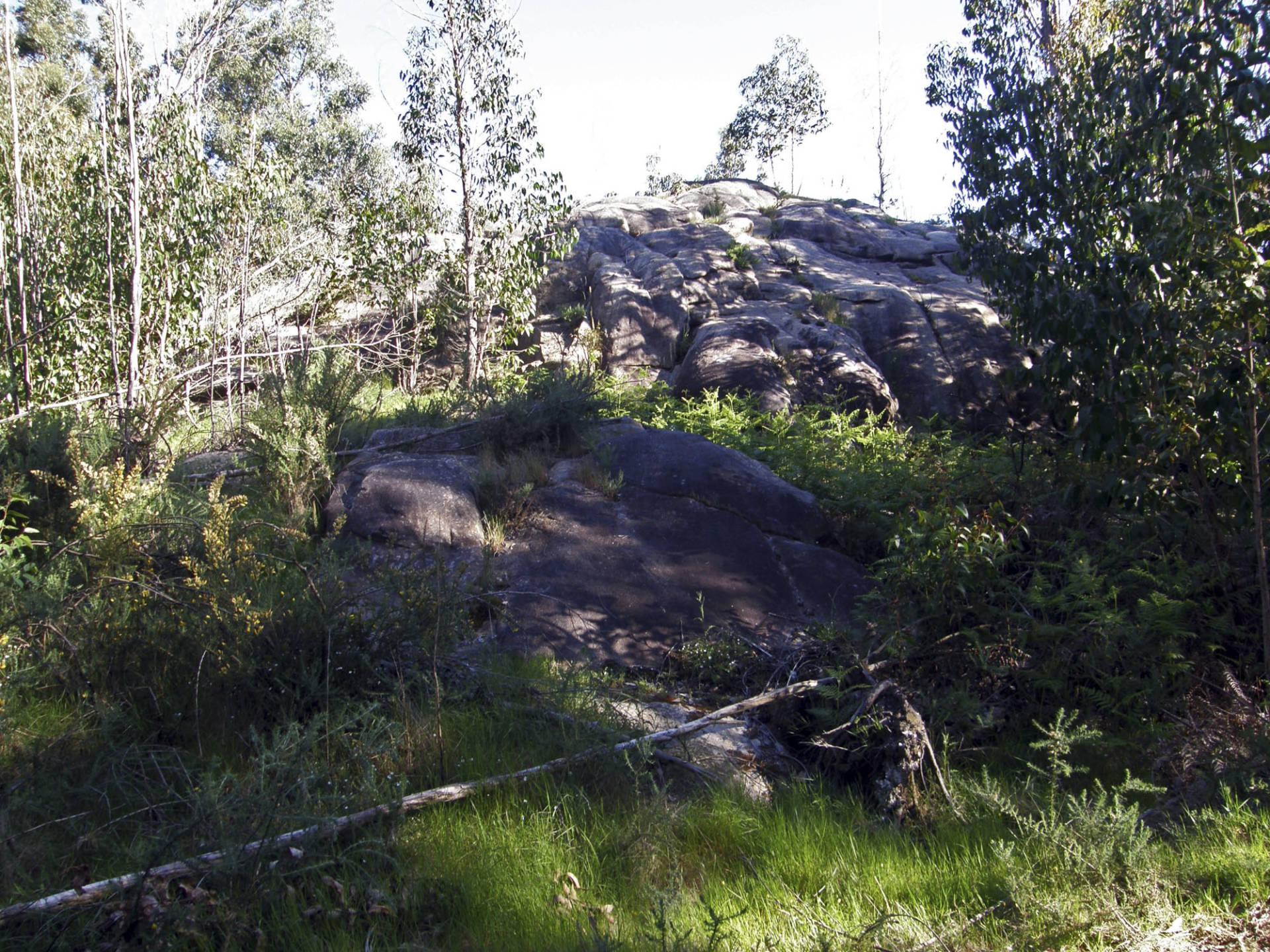 A Pedra Que Fala. Vista xeral do afloramento.