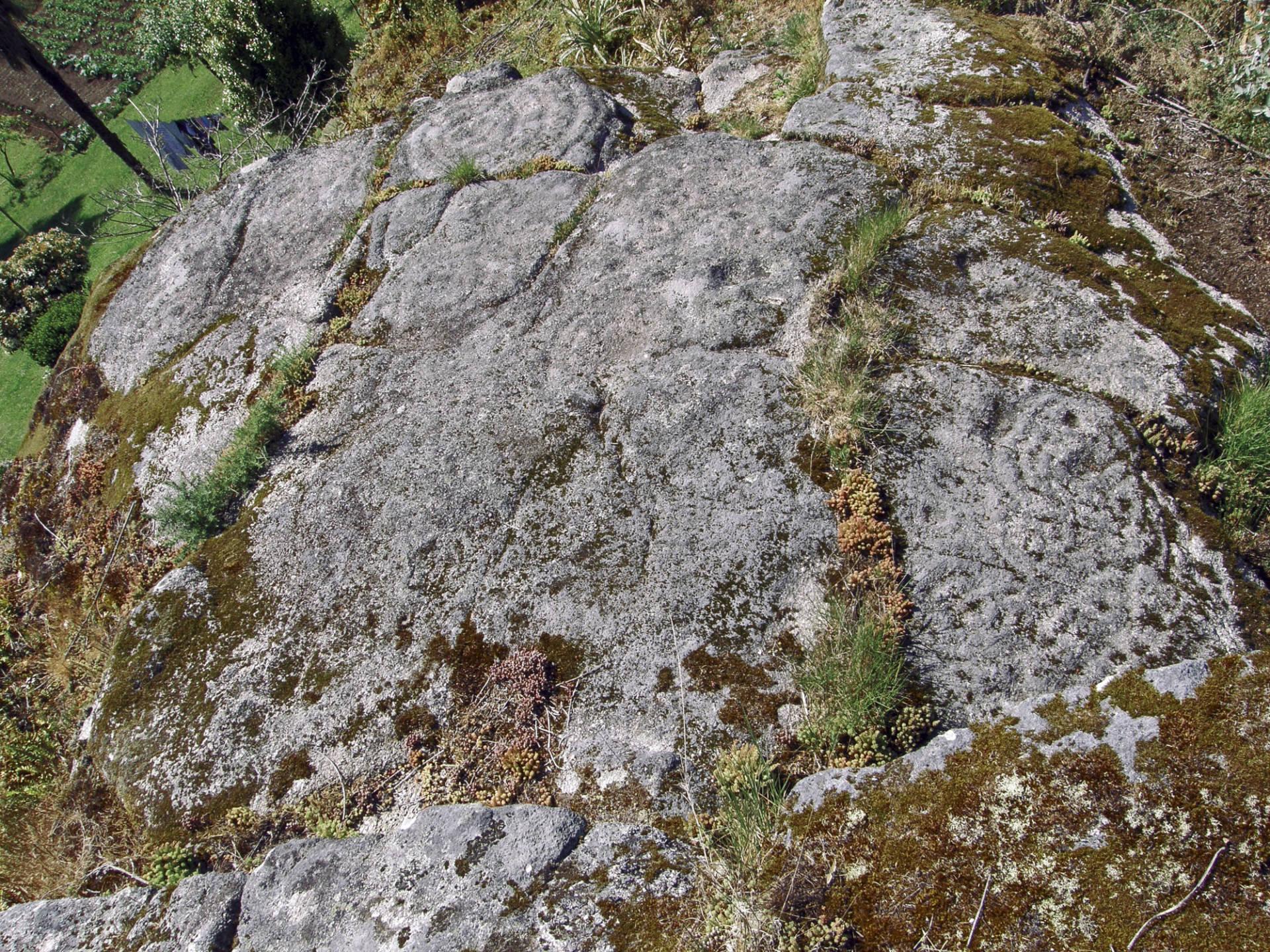 Vista xeral da rocha cos gravados.