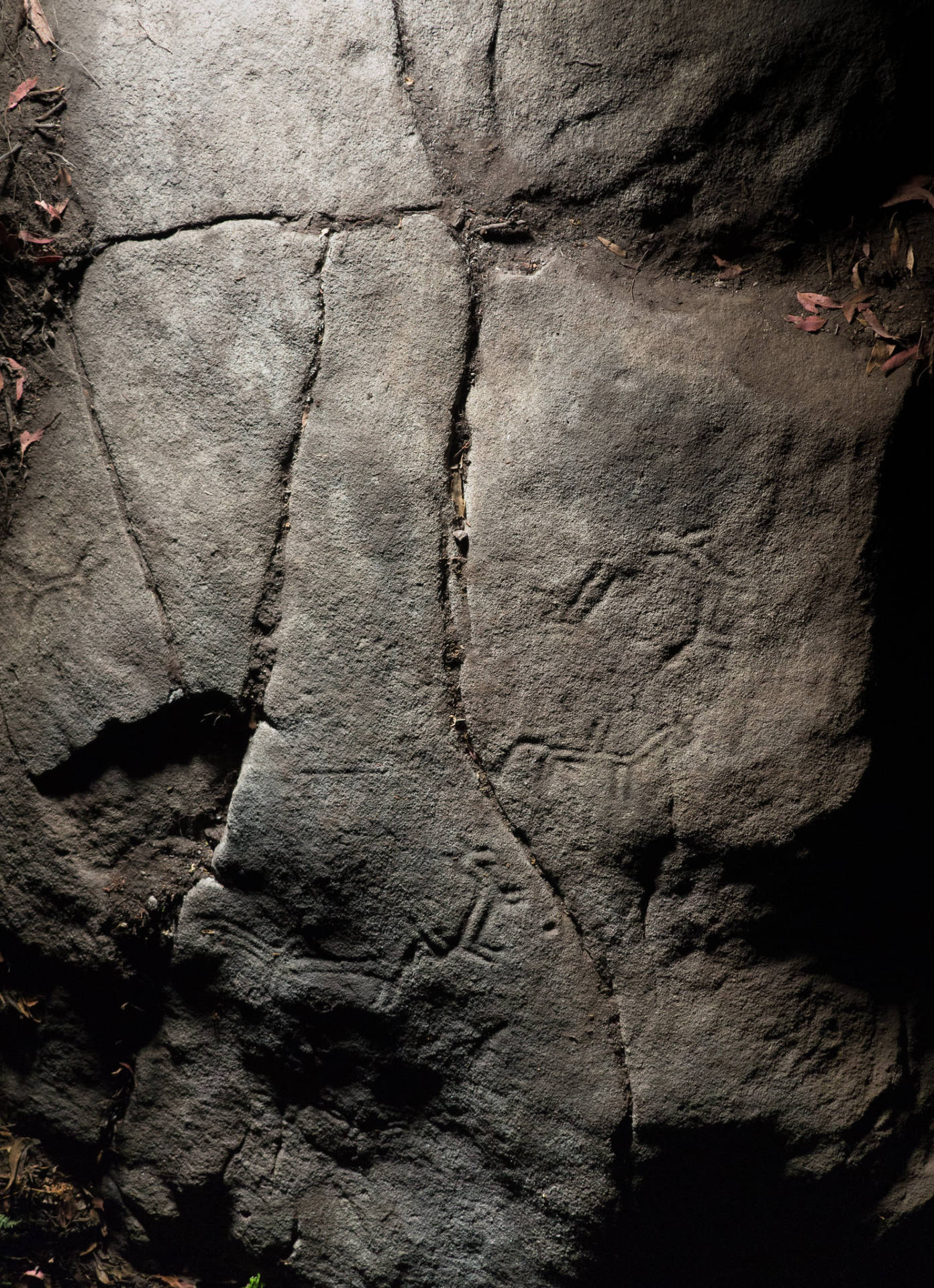 Vista Xeral da Pedra da Loba.©Colectivo a Rula.