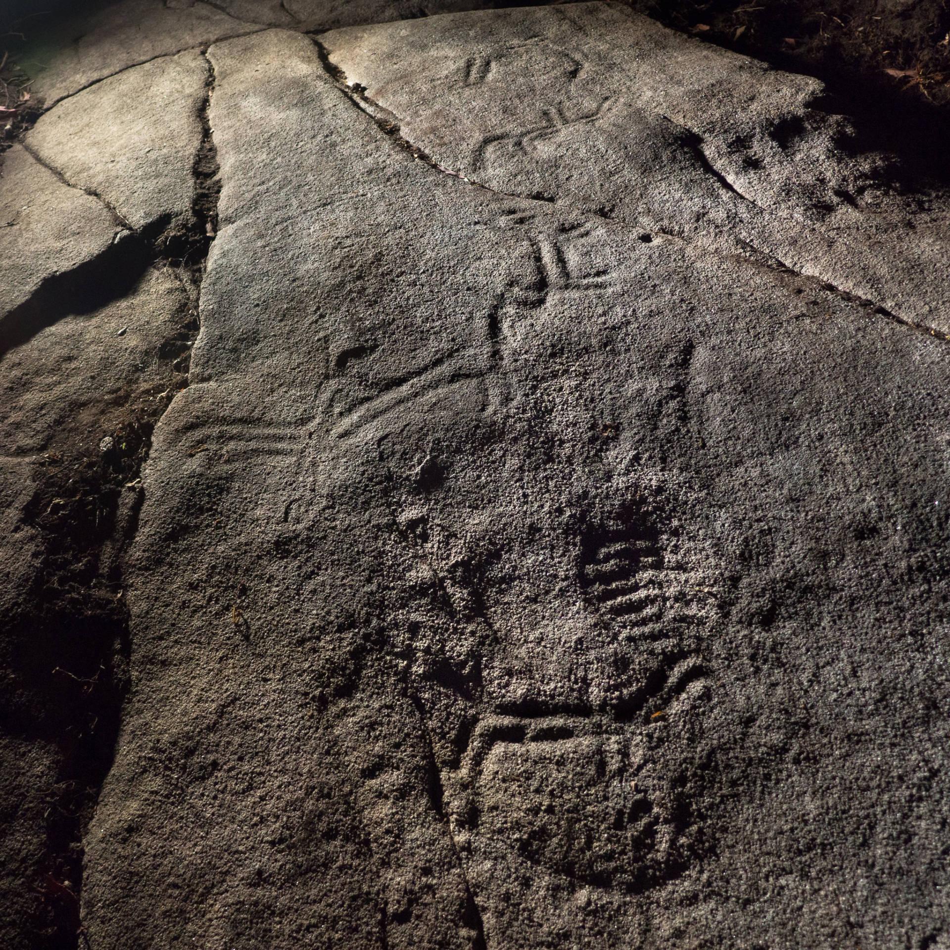 Zoomorfos na Pedra da Loba.©Colectivo a Rula.